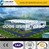 La Cina poco costosa facile e velocemente installa il magazzino/fabbrica della struttura d'acciaio/liberato di con il disegno