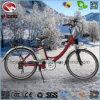 Bike дороги города хорошего качества рамки 250W сплава электрический