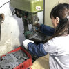 Qualitäts-Blech-Teile, die Teile stempeln