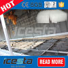 Industrielle Salzlösung-abkühlende und einfrierende Block-Eis-Maschine