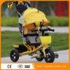 最もよい価格の赤ん坊の三輪車は販売のための三輪車をからかう