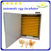 Starkes und Durable CER Approved Automatic Chicken Egg Incubators (YZITE-2112)