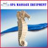De Massage van het Water van het zeepaardje (KF461)