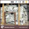 싱크대와 도와 (RHCA-037)를 위한 백색 파란 대리석 얼음 비취 대리석