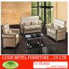 Sofà del fabbricato/sofà di legno/sofà dell'hotel