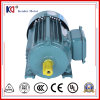 AC Electric Induction Motor met 0.25kw 2p