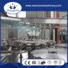 China-Qualität Monoblock 3 in 1 komplettem Saft-Produktionszweig (HAUSTIER Flascheschraube Schutzkappe)
