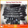 Staven van het Staal van de Lente van de Hoogste Kwaliteit van de Fabrikant van China Sup9 de Vlakke