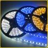 Un nastro delle 5050 flessioni LED con il tubo del silicone