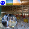 Amino Acid quelato de hierro grado de alimentación Powder