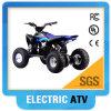 Coche de cuatro ruedas eléctrico ATV 500W 36V del cabrito