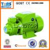 Tops Qb Caliente-Venta eléctrico del hogar Limpie la bomba de agua