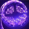 Franja flexible del LED 5050 60LEDs 24V RGBW tira del LED