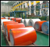 PPGI/strich galvanisierte Stahlspulen für Baumaterialien vor