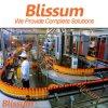 Água engarrafada da vitamina que faz a máquina/Machinery/Line/Plant/System/Equipment