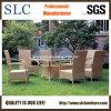 Tabella del giardino regolata/sedia di giardino e Tabella/Tabella e sedia del rattan esterne (SC-B1012)