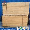Knotty e madeira russa Pine Wood