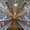 Cage Farme de poulet de matériel de volaille de batterie de qualité sur la vente