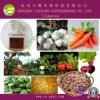 Goede Quality Herbicide Clomazone (98%TC, 40%EC, 480g/l de EG, 72%EC)