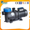 2HP Plastic Swimming Pool Pump