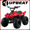Mini ATV ottimistico 110cc ATV