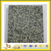 Jiangxi Green Granite Flooring Tile da vendere (YQA-GT1033)