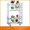 溶接Mesh Display Flower TrolleyおよびRacks