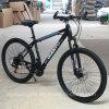 Bici de montaña barata del camino del carbón de la alta calidad (ly-a-17)