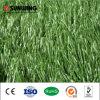 인공적인 잔디가 최신 판매 수족관에 의하여