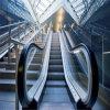 Sichere bequeme Handelsgebäude-Rolltreppe