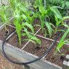 Fabricante plano del sistema de irrigación del tubo del goteo