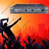 Voet-450 Versterker van de Buis van 2 Kanalen de PRO Stereo450W Audio Hifi
