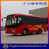 Saleのための旅行Bus