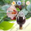 Extrait d'aubergine de Rose d'approvisionnement d'usine