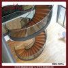 Los peldaños de madera vidrio pasamanos de la escalera (DMS-1051A)