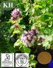 꽃박하속의 식물 Extrat 또는 세균 발육 저지와 Anti-Oxidation를 위한 꽃박하속의 식물 Vulgare 추출