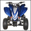 300cc ATV (SJ-ATV300)