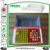 Plastic pieghevole Storage Egg Crate per Egg Trays
