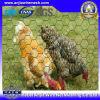 Сетка цыпленка PVC покрытая с (CE и SGS)