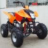 250CC wassergekühltes ATV (QW-ATV-08I)