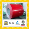 Colore Steel Coil in Steel Coil&Strip