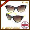 Óculos de sol do plástico do frame do olho de gato