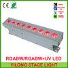 새로운 다가오는 벽 세탁기 5in1 Rgabw 색깔 LED 세척 빛