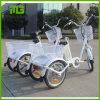 Triciclo eléctrico del motor del cargo de la rueda de la buena calidad 3 de China