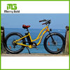 Fat Tire Electric Mountain Ebike with LCD Display From China