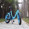 가장 새로운 여자 20  접히는 뚱뚱한 Ebike 전기 자전거 48V 500W