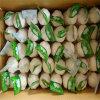 Fornitore di aglio bianco fermentato buon gusto