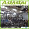 Preço automático Certificated Ce da máquina de processamento do sumo de maçã