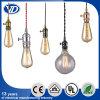 스위치를 가진 Copper Lamp 홀더에 의해 하는 금속 펀던트 램프