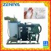 Máquina de hielo de poca energía de la escama del agua de mar para el proceso/industria pesquera de los mariscos